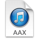 AAX ICON