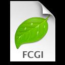 FCGI ICON