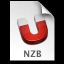 NZB ICON