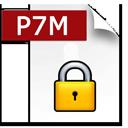 P7M ICON