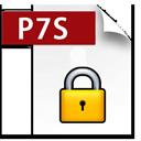 P7S ICON